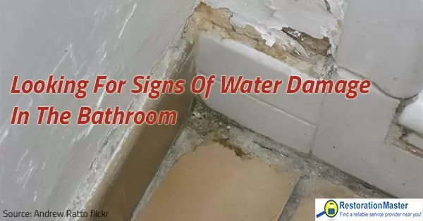 Looking for Signs of Water Damage in the Bathroom