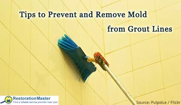 remove mold from grout lines