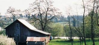 ShipleyCook_Panorama