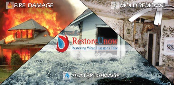 water cleanup Walkersville md