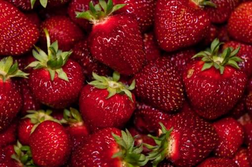 rainier strawberry