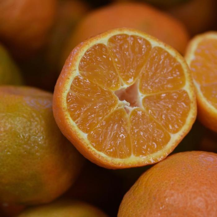 mandarin tahoe gold