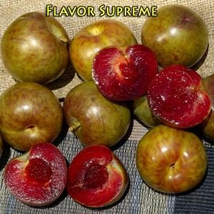 pluot flavor supreme
