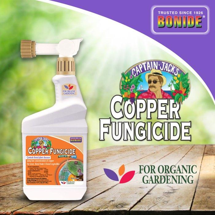copper fungicide bonide