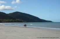 australia queensland cape tribulation 7