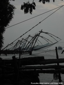 india kochi fishing nets 2