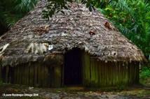 El Cocotal 12