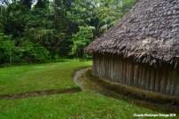 El Cocotal 25