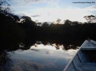 Río Caquetá 8
