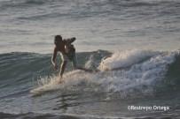 Piyi surf 4