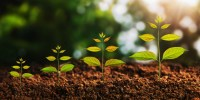 3 Essential Qualities You Need for Your Growth Journey