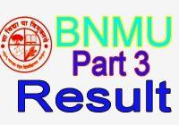 BNMU Part 3 Result 2020