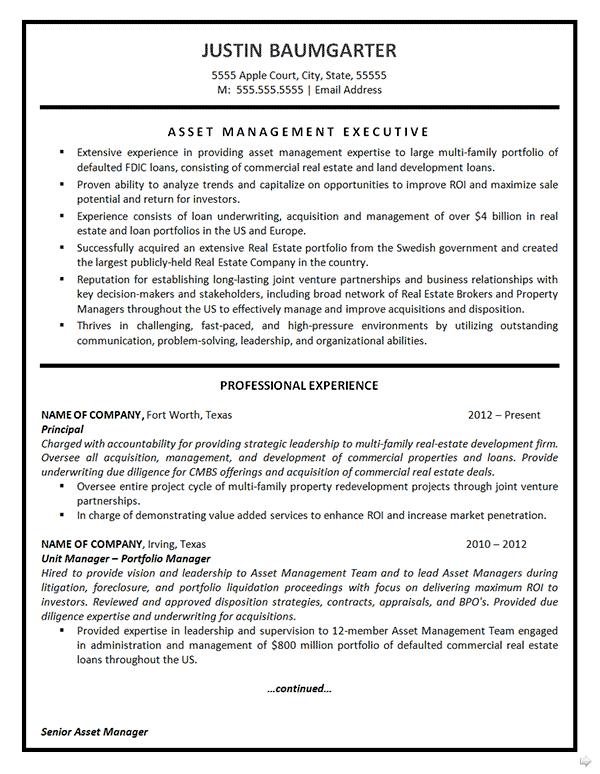resume professional summary management