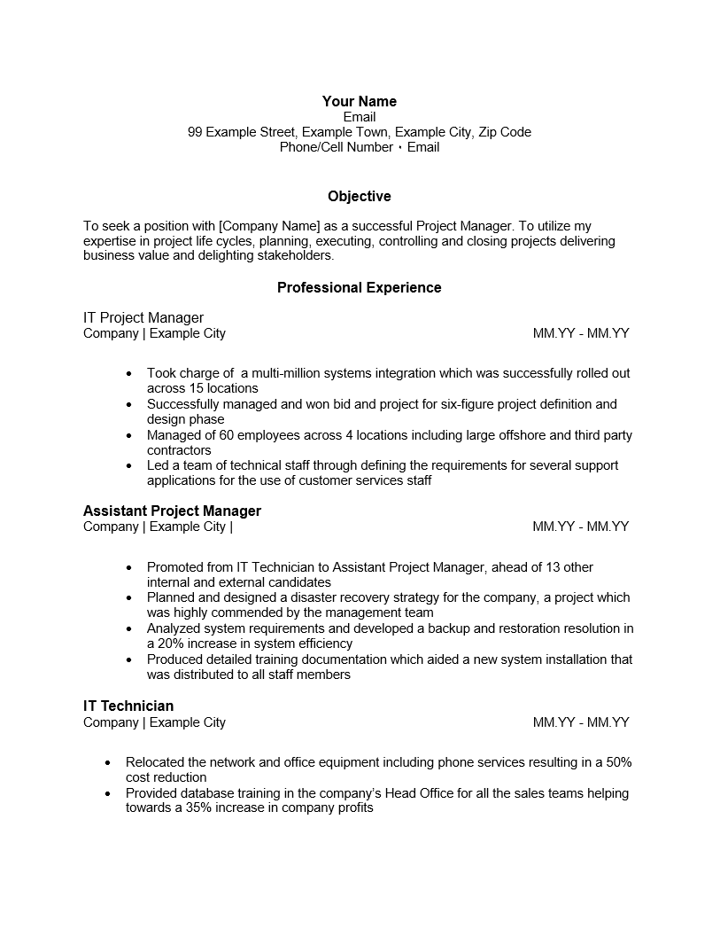 It Project Manager Resume Template Localization Project Manager