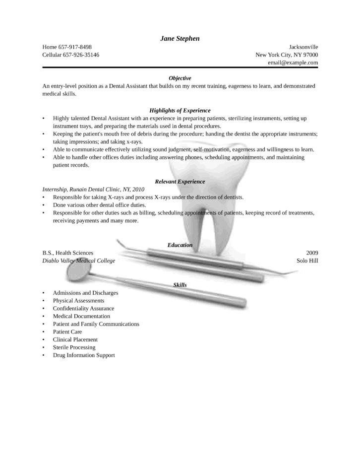 Resume Format For Freshers Dentist Free Online Resume Format