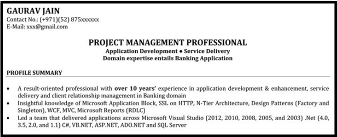 Don't just describe what you do, describe how you do it. Resume Format For It Project Managers With Sample