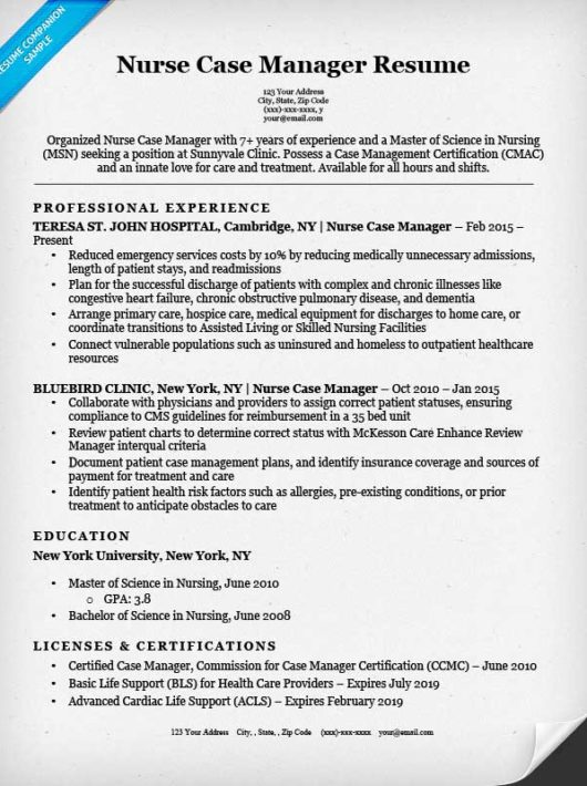 city manager resume examples