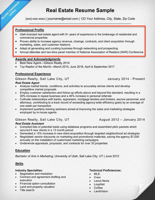 career profile examples resume