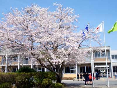 小倉優子 茂原中学校