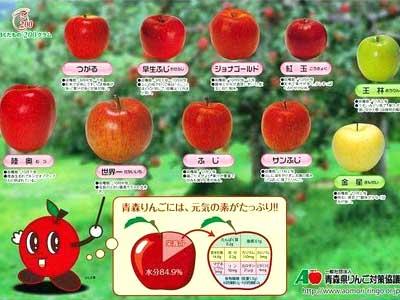 王林 小学校 りんごの下敷き