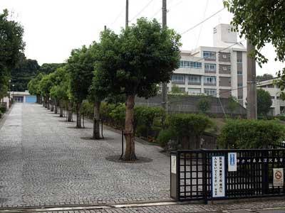 道端ジェシカ 深沢高校