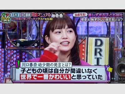 川口春奈 テレビ ウチのガヤがすみません