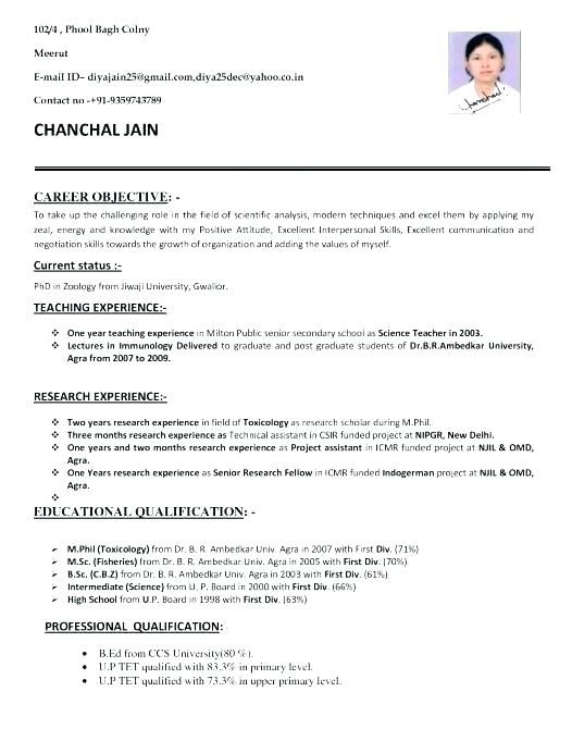 Cv Template Zoology Resume Format