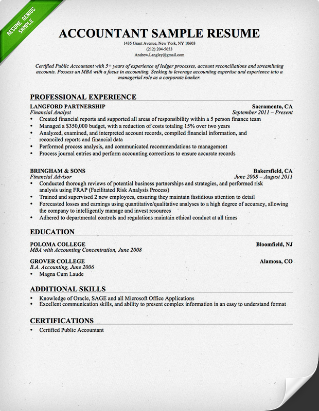 example of chronological resume for accountant