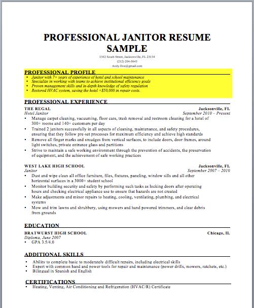 Curriculum Vitae Profile Summary