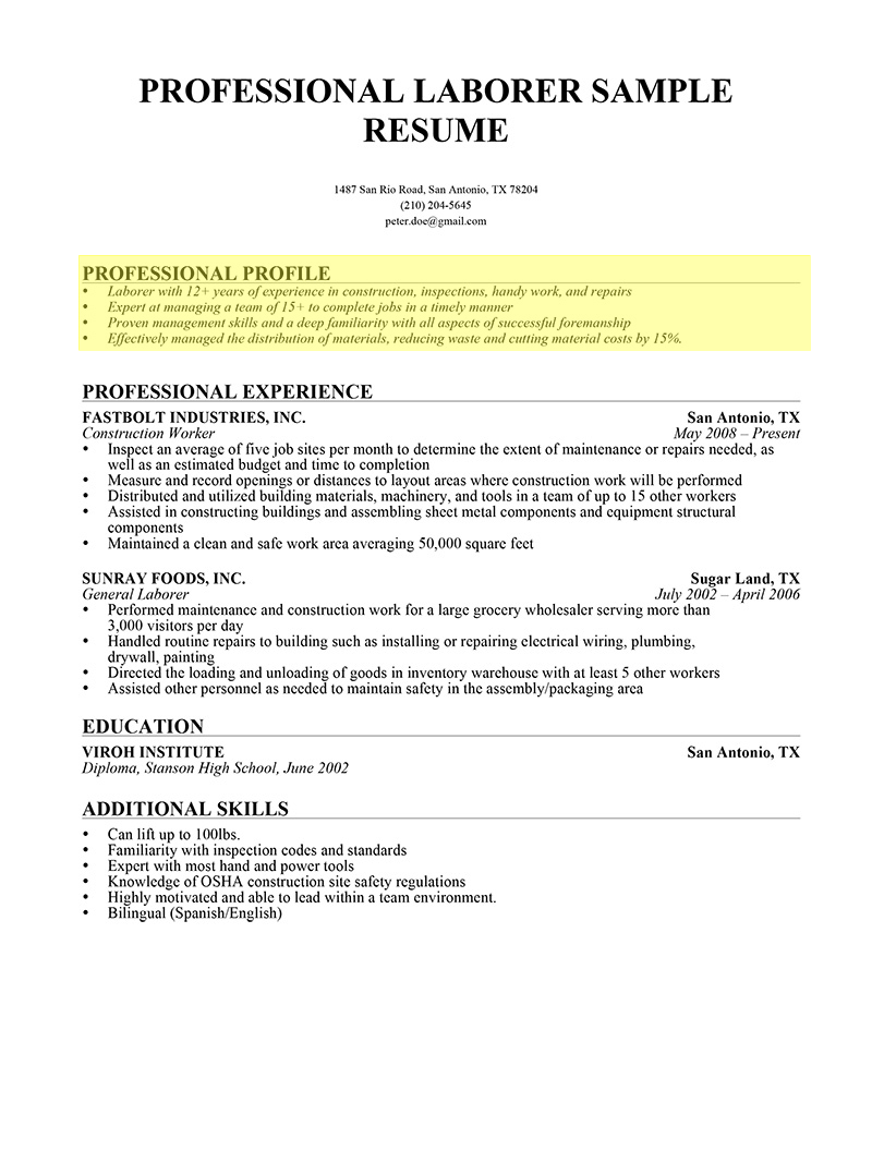 What Should I Write In My Resume How To Write A Professional Profile Resume Genius