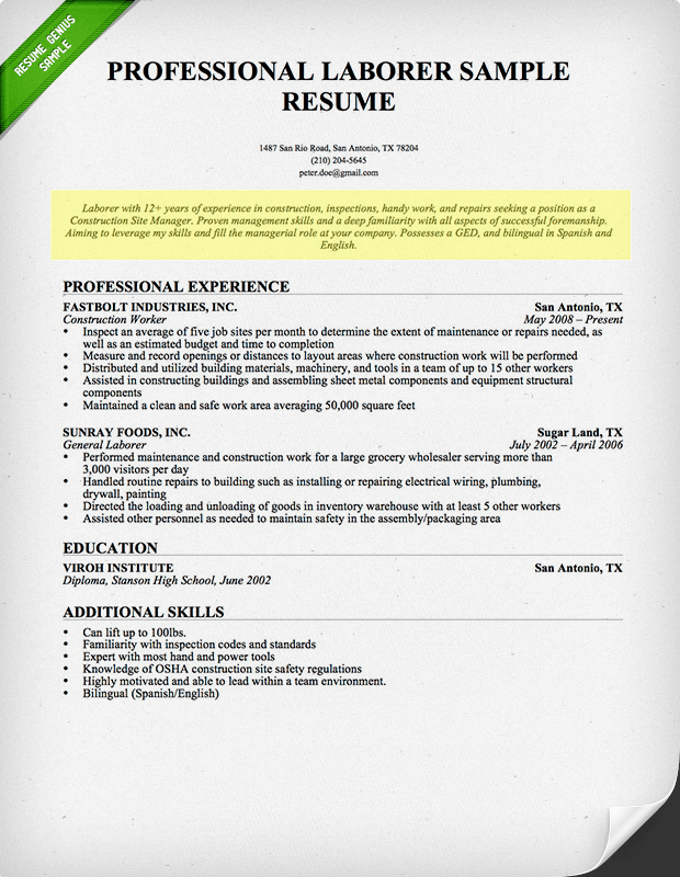 How To Write A Professional Profile Resume Genius  Profile On A Resume