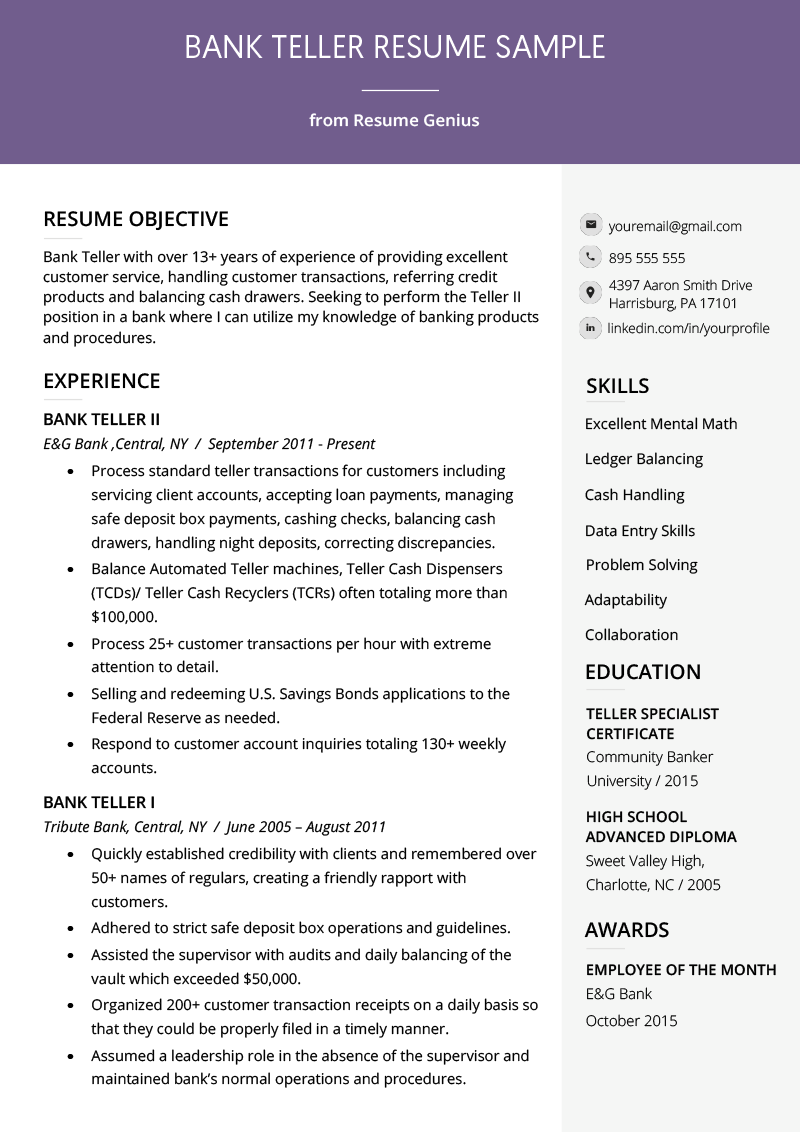 experienced banking resume example