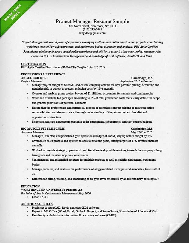 28 Resume Project Manager It Resume Sample For It Project