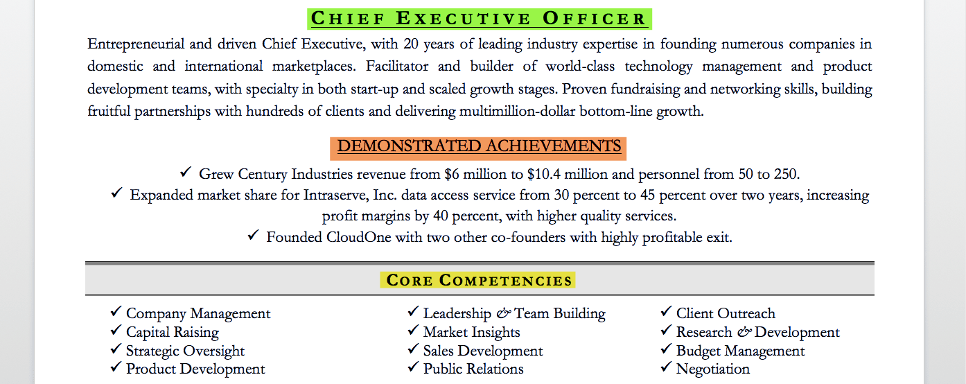 Executive Resume Examples & Writing Tips CEO CIO CTO
