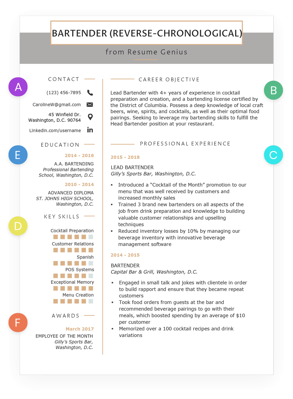 Standard Resume Format Template Chronological Resume Samples Writing Guide Rg