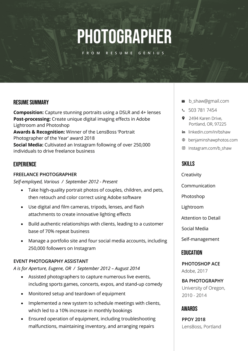 text resume samples