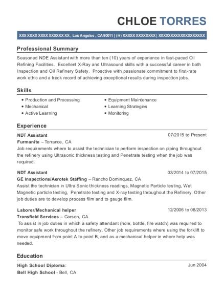 Ndt Resume Examples 11 Best Technician Sample