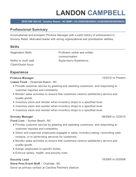 Horizons Temp Services Security Lead Resume Sample