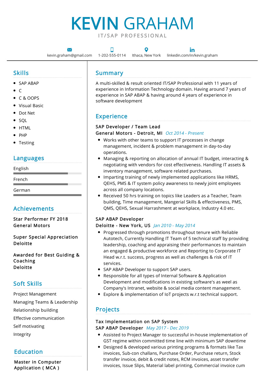 sample resume for development professional