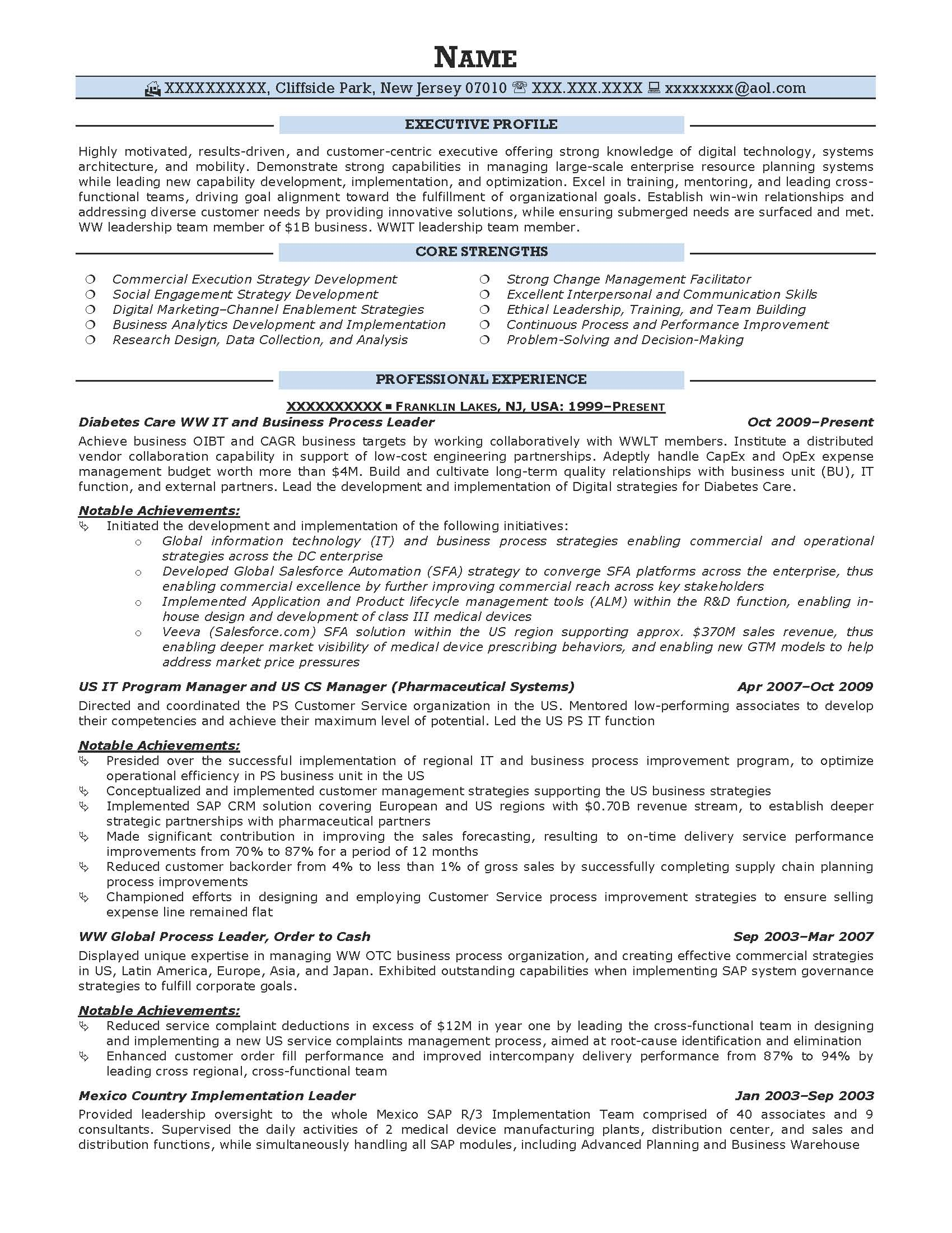 It Executive Resume Sample Executive Resume Samples Resume Prime