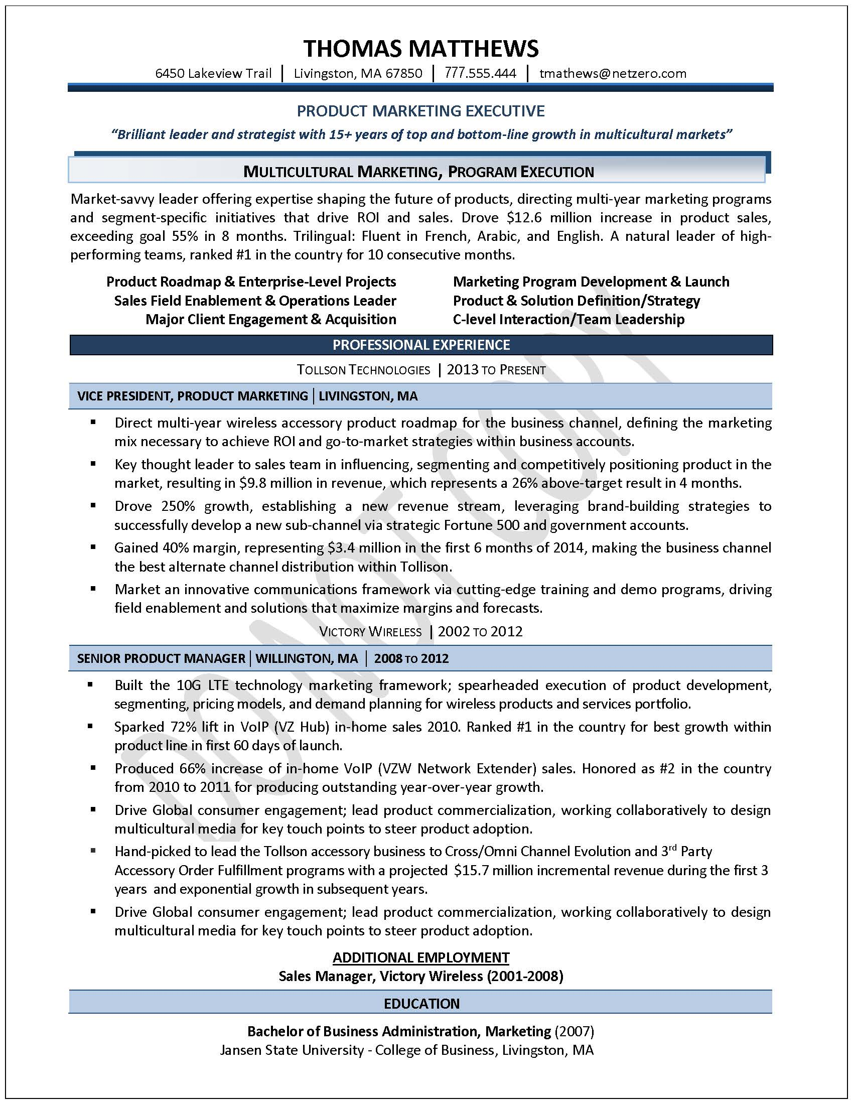 Resume Samples For Professionals Executive Resume Samples Professional Resume Samples