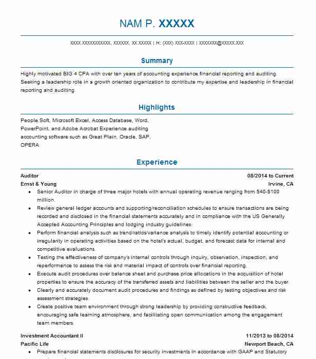 junior auditor resume samples