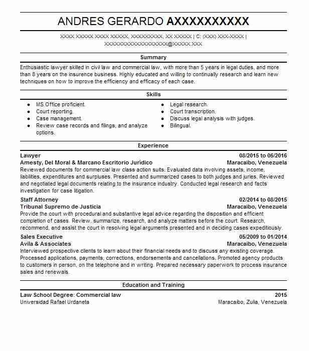 examples of resume summary for lawyers