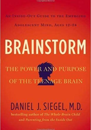 Resumen del libro Tormenta cerebral, Brainstorm de Daniel J. Siegel