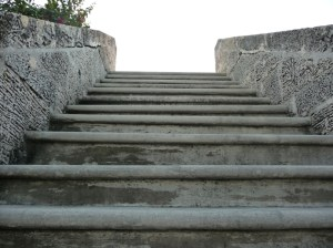 Coral Rock Stairs At Matheson Hammock Beach in Coral Gables