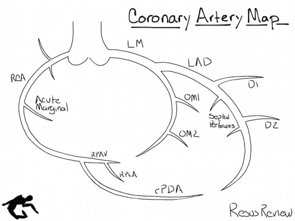 Coronary Artery Diagramming Resus Review