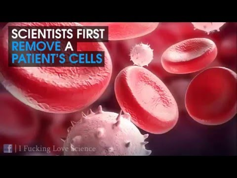 Resveratrol A new treatment for Cancer