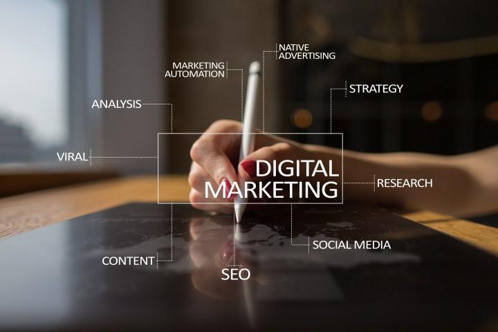 Digital Marketing B2B DXP