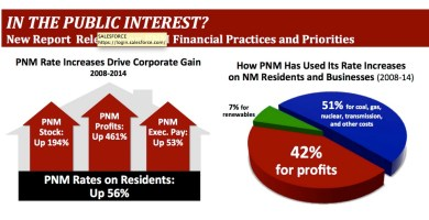PNM Screen_Shot_Financial_report