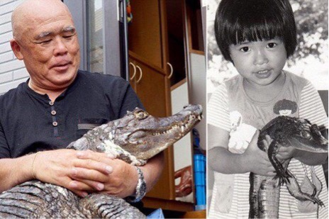 Japanese Man lives with Pet Croc He purchased 34 years Ago